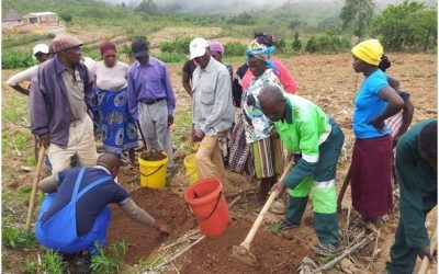 Small scale farmers prepared to withstand climate change