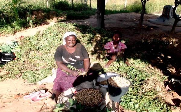 Garden farming improves family health